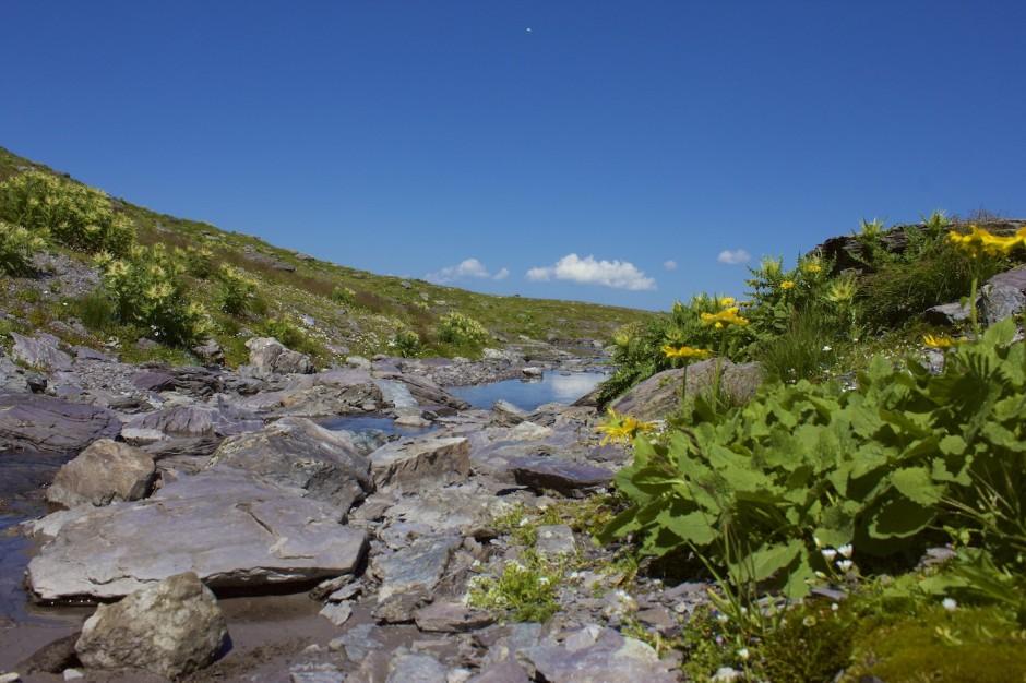 Fotos-5-Seen-Wanderung-Pizol56