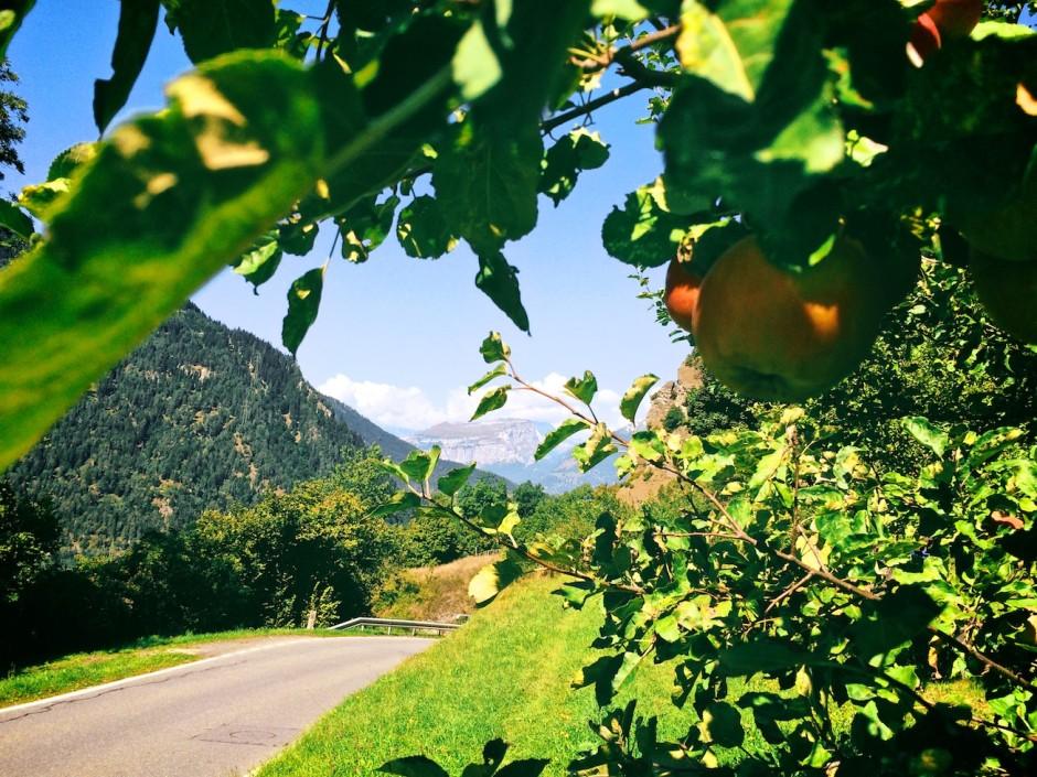Radtour-Domleschg-Rennvelo 12