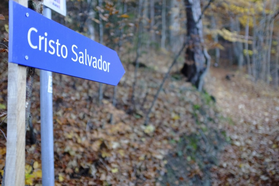Cristo-Salvador-Jesus-Bad-Ragaz-Bad-Ragartz-Schweiz 4