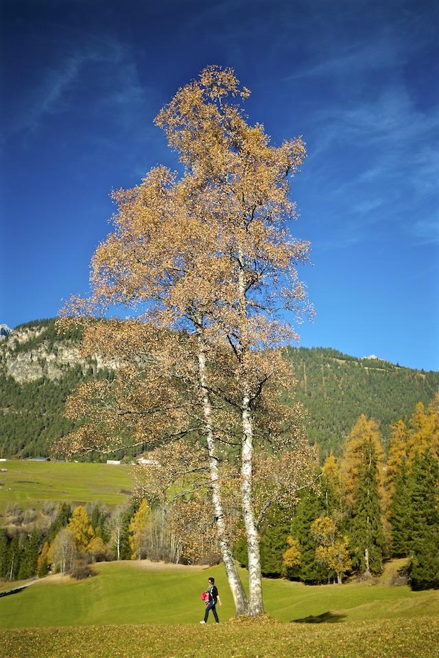 Filisur-Schweiz-Graubünden 7