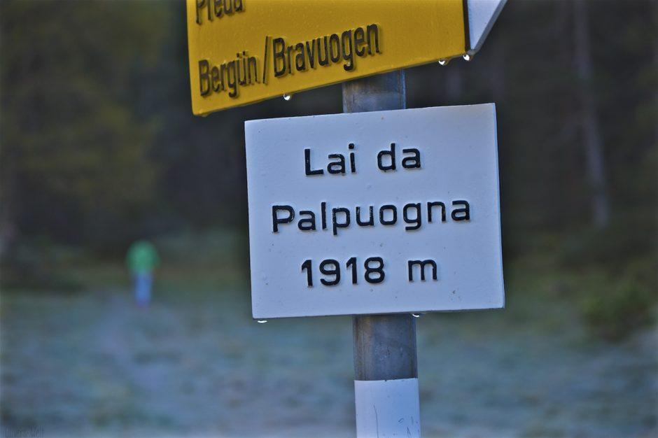 palpuogna-see-herbst-schweiz-alpen-1