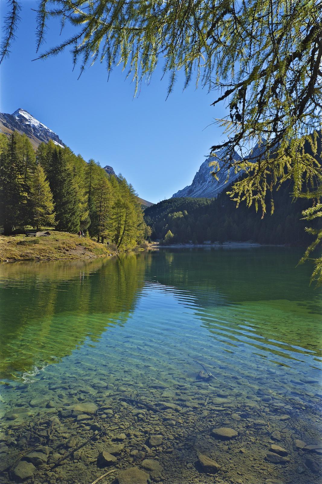 palpuogna-see-herbst-schweiz-alpen-10