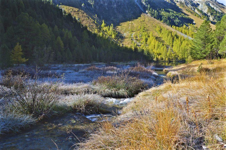 palpuogna-see-herbst-schweiz-alpen-11