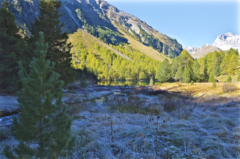 palpuogna-see-herbst-schweiz-alpen-12