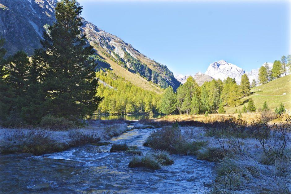 palpuogna-see-herbst-schweiz-alpen-13