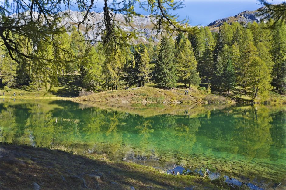 palpuogna-see-herbst-schweiz-alpen-7