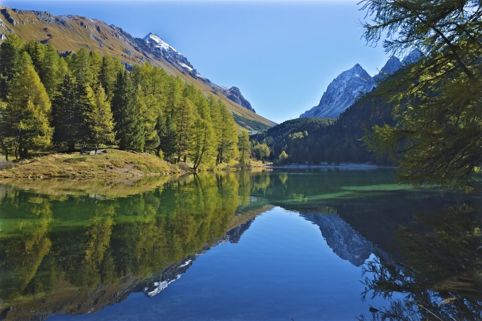 palpuogna-see-herbst-schweiz-alpen-9